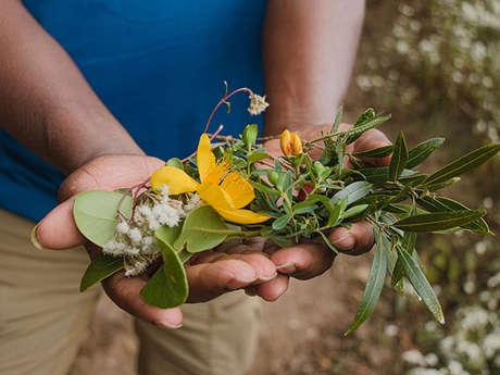 "Zarlor guided walking tour - Herbal tea and medicinal plants ""Zherbaz péi"""