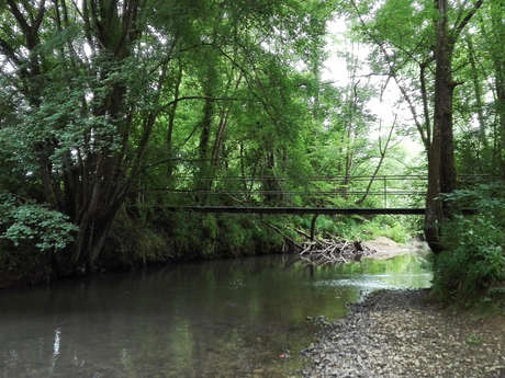 sendero del bosque de Bernet
