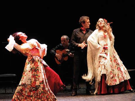 Programa del teatro - Carmen Flamenco