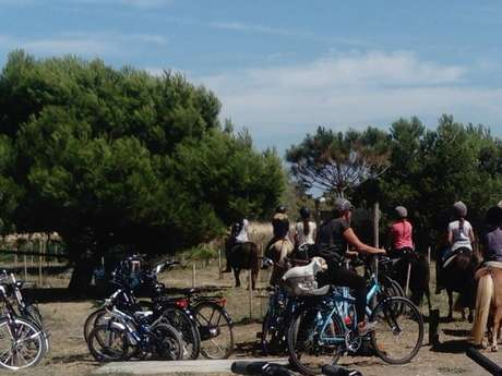 PONEY CLUB DU PHARE