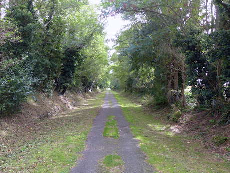 Cycling path 5 : Between the Arnoult Valley and the Channel Charente-Seudre - 9 mi