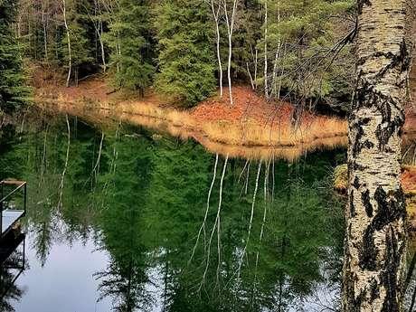 Le sentier du lac de Pescofis