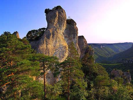 Mont Aigoual, de Causses en Gorges (1)