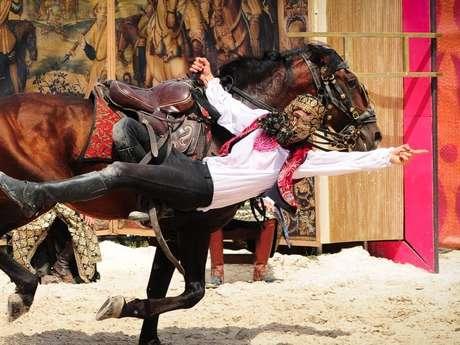 Spectacle de chevaux et rapaces à Chambord