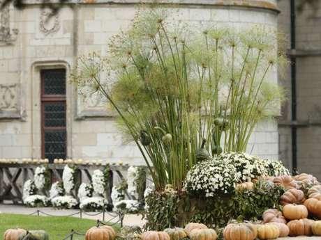Splendeurs d'automne