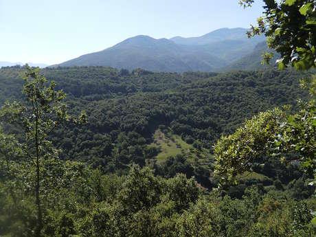 Rando Chemin des Mas Reynès