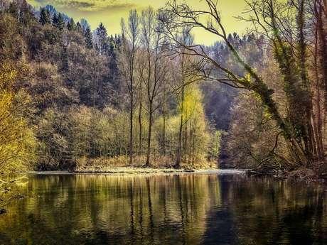 Circuit de randonnée : chemin des étangs