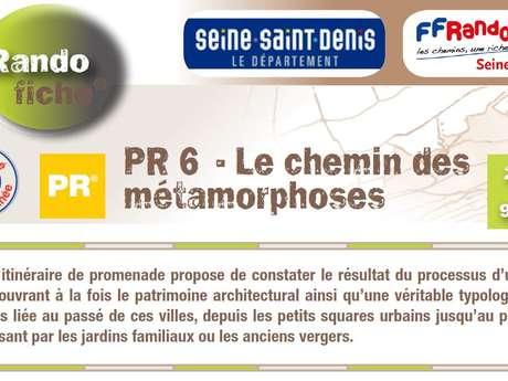 PR6 : LE CHEMIN DES MÉTAMORPHOSES
