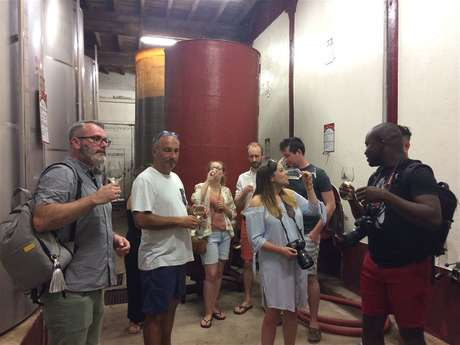 Excursion in shared minibus - 1/2 Day - Visit of 2 vineyards & Wine tasting - F / GB - Trésor Languedoc Tours
