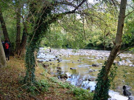 Promenade sur les rives de l'Ariège
