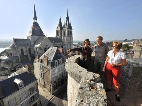 Les visites guidées de Blois - Ville d'Art et d'Histoire
