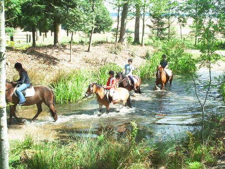 Ferme Equestre de Lagesse