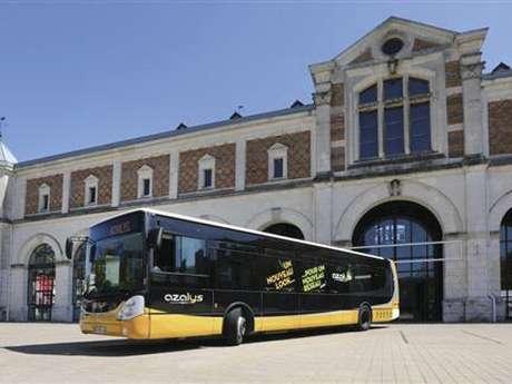 Navette Azalys Gare Onzain>Domaine Chaumont-sur-Loire