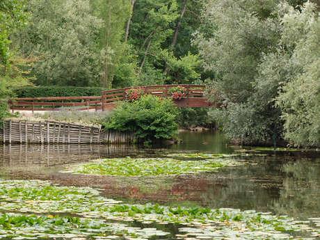 Parc Pierre Pitois (Parc des étangs de Fouchy)