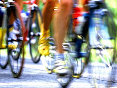 CIRCUIT CYCLO N° 11 : LE CAUSSE DE SAUVETERRE