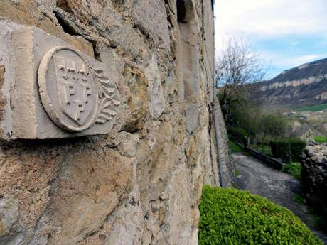 Tradition viticole autour de Compeyre