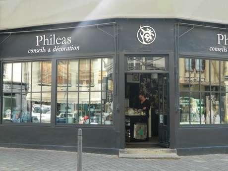 Phileas Conseil et Décoration