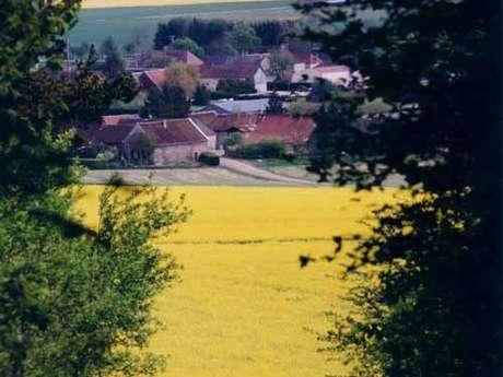 Balade entre plaine Champenoise et Pays d'Othe