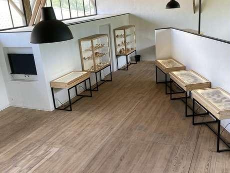 CENTRE D'EXPOSITIONS ET DE RECHERCHES ARCHÉOLOGIQUES: LE DOLIUM