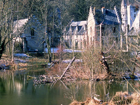 L'Aisne à vélo : trésors cachés en forêt de Saint-Gobain