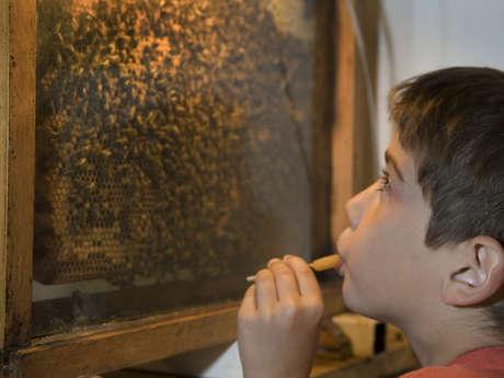 """Visite audioguidée : """"Le monde merveilleux de Zaza l'abeille"""""""