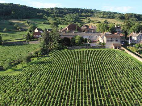 Domaine de l'Evêché - Joussier Quentin et Vincent