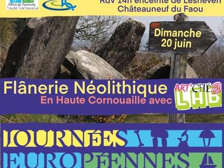 Flânerie Néolithique