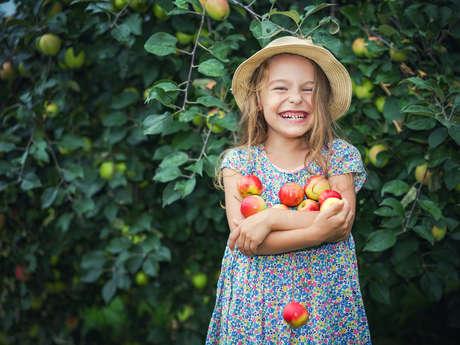 Atelier pommes