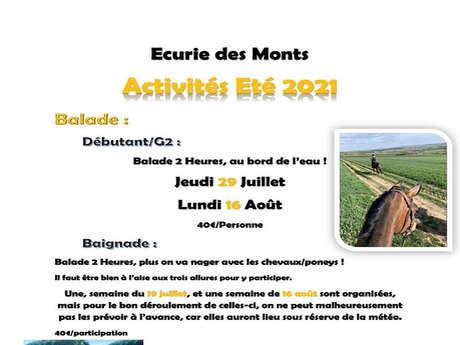 Balade équestre à l'Ecurie des Monts - Balade accompagnée - Le Hom