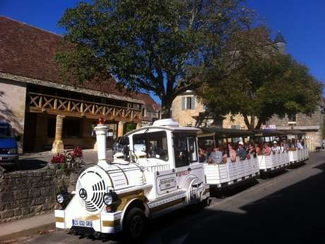 Le Petit Train Dommois