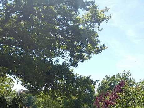"""Aire d'accueil de camping car - Camping """"Au Lac d'Hautibus"""" Argentonnay"""