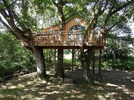 Domaine Chantoiseau - Cabane dans les arbres, Tente trappeur, Tipi