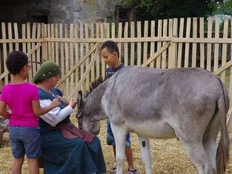 Saveurs animalières : La basse-cour en émoi