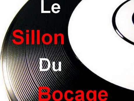13 ème Salon du disque