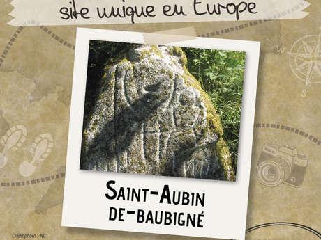 Visites Estivales 2021 - Les Vaulx - Saint-Aubin-de-Baubigné