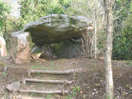 Dolmen de la Pierre Levée du Grand Gât