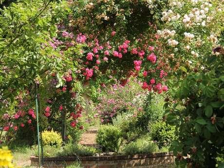 Gîte au jardin - Les Roches Blanches