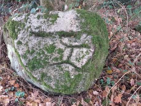 Mauléon - Les rochers gravés des Vaulx