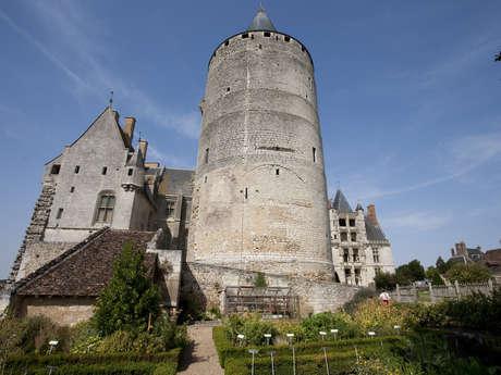 Visite des plantes de l'intérieur et à l'extérieur du château
