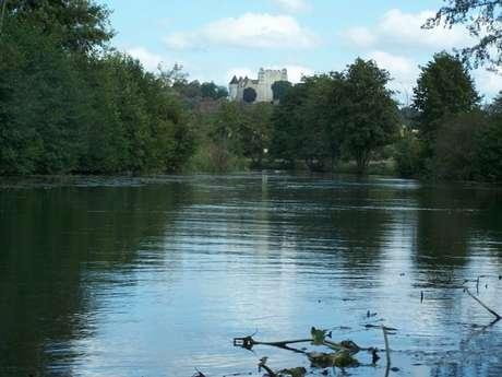 """L'Huisne, pêche en rivière 2ème catégorie, parcours de pêche à la mouche labellisé """"passion""""."""