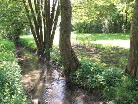 Pêche en rivière 1ère catégorie : La Berthe