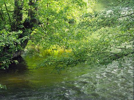 La vallée de l'Huisne