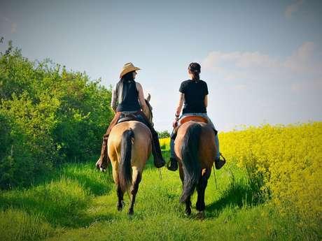 Journée pique-nique à cheval