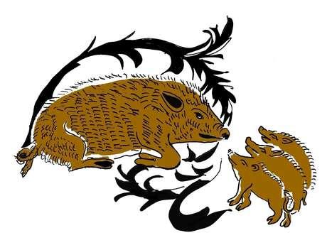 Vilaines bêtes ! Bêtes noires et bêtes rousses, croyances et fantasmes