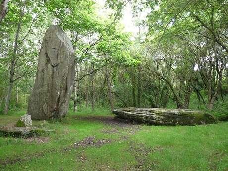 Visite des sites mégalithiques de Plovan