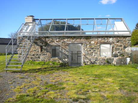 La maison où j'ai grandi / art contemporain