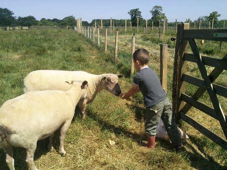 Visite de la ferme de Lanvern