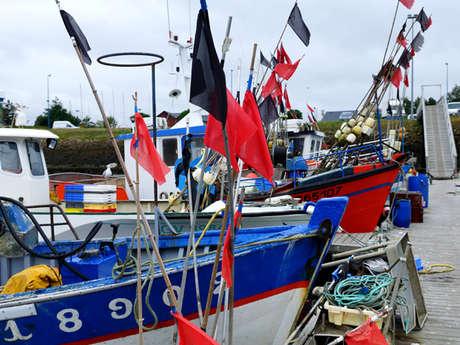 Port de pêche de Loctudy