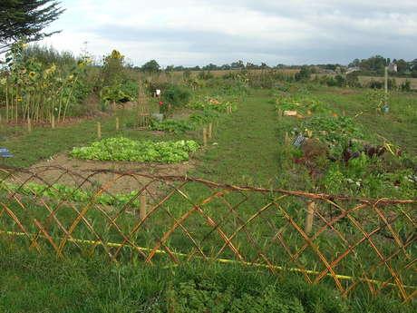 Atelier compostage et jardinage au naturel