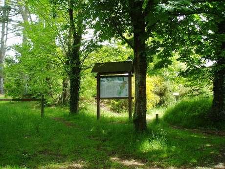 Sentier botanique de Lanrien